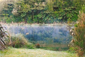 Morning Mist over Lake Mangonui Waitaia Lodge (photo by Greta Cabrita)
